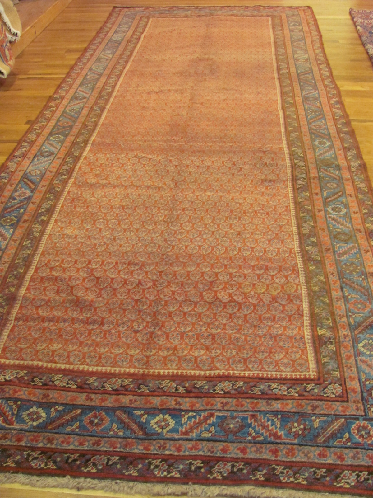 Antique Persian Bakshaish Rug | Circa 1880