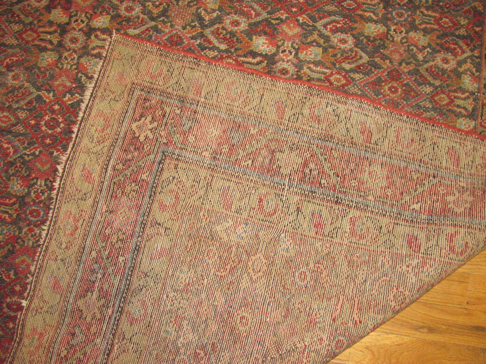 24459 antique Persian Malayer rug 5,4x9,9 -3