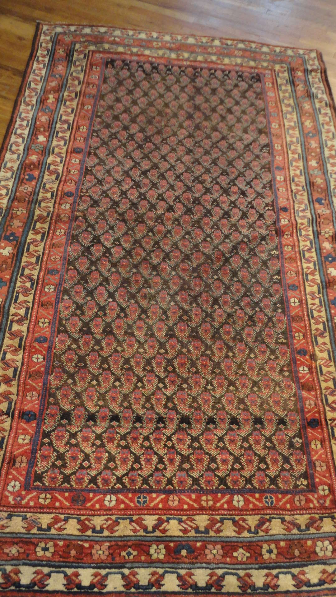 Kurd Rug | Northwest Persia | Handmade | Antique Circa 1900