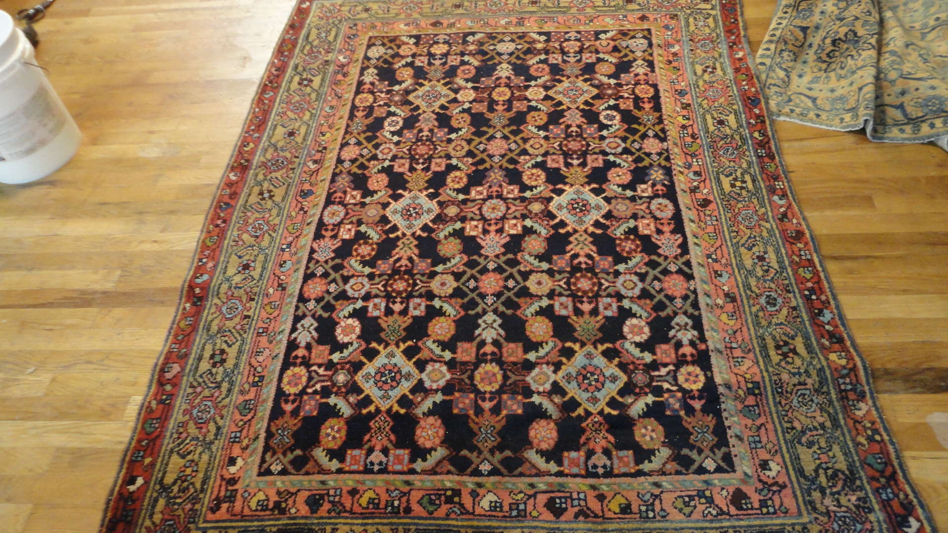 Persian Malayer Rug | Antique | Circa 1910