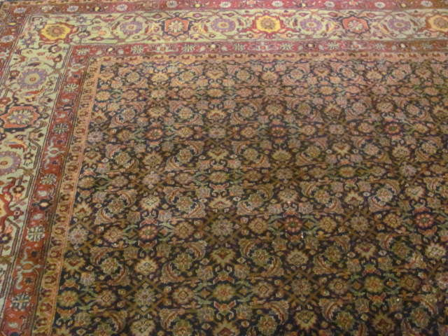 24742 indian lahore rug-10,3x10,11-1