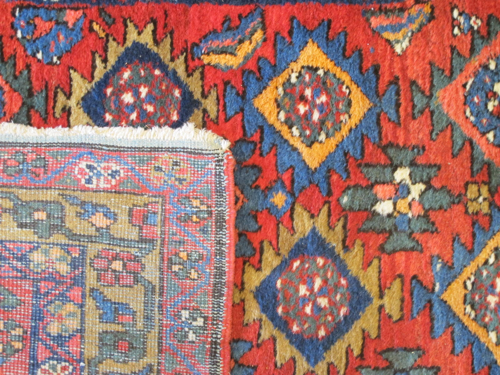 23109 northwest persian runner 3,3 x 16 (4)